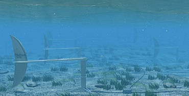 Energía Renovable Marina