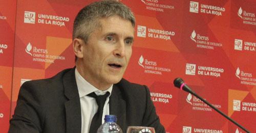 Fernando Grande-Marlaska, presidente de la Sala de lo Penal de la Audiencia Nacional