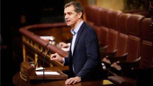 Toni Cantó, Responsable del Área de Anticorrupción y Transparencia Ciudadanos-Partido de la Ciudadanía