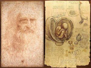 Autorretrato de Leonardo da Vinci dibujado entre 1512 y 1515 (izquierda) y dibujos sobre el embrión humano, realizados entre 1510 y 1513 (derecha).