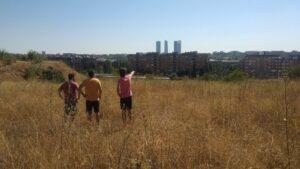 Terrenos cedidos para construir el IES Montecarmelo