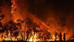 Incendio forestal en Australia