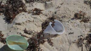 Vasos de plástico en una playa