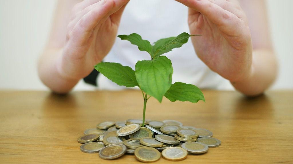 Dinero seguro verde