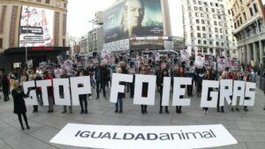 Más de un centenar de activistas reclaman al Gobierno que prohíba la producción de foie gras en España