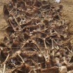 """Las exhumaciones a contrarreloj de las fosas: """"Nuestra pelea es que el estado se haga responsable de ello"""""""