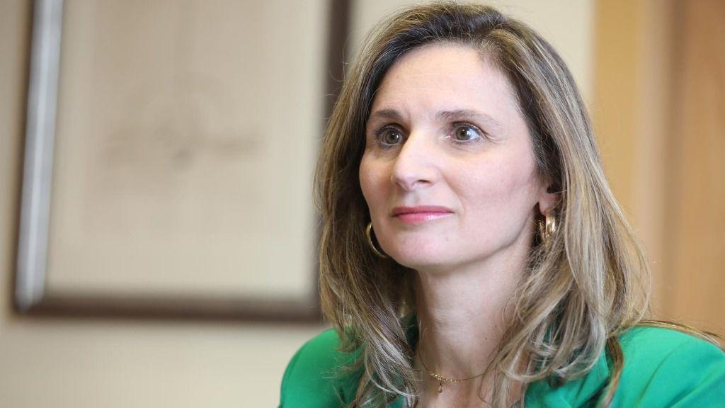 La consejera de Medio Ambiente de la Comunidad de Madrid, Paloma Martín