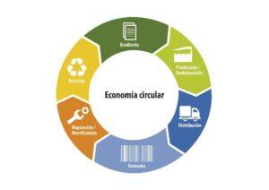 Infografía economía circular