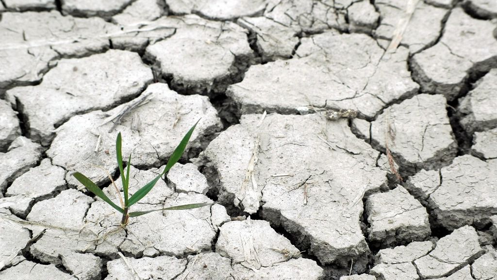 Cambio climatico sequia