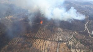 Incendio forestal en Barrancos, Portugal
