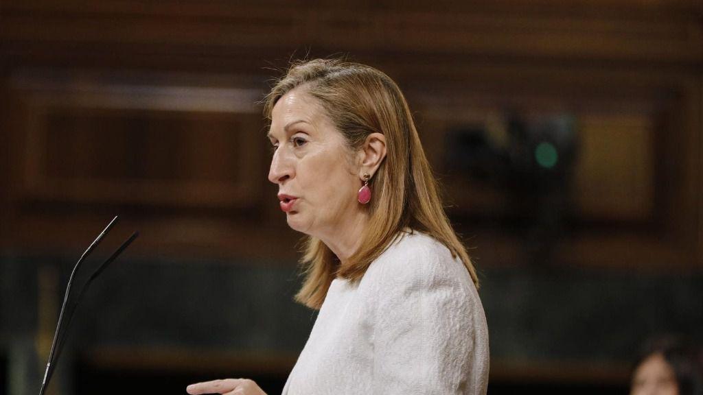 La vicepresidenta segunda del Congreso y diputada del PP, Ana Pastor, interviene durante una sesión plenaria en el Congreso de los Diputados