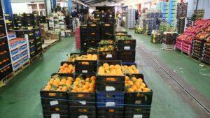 Fruta en Mercamálaga