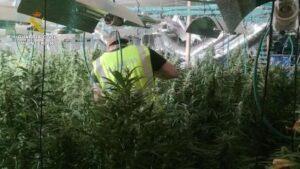 La Guardia Civil desarticula una organización dedicada al tráfico de drogas en Tarragona