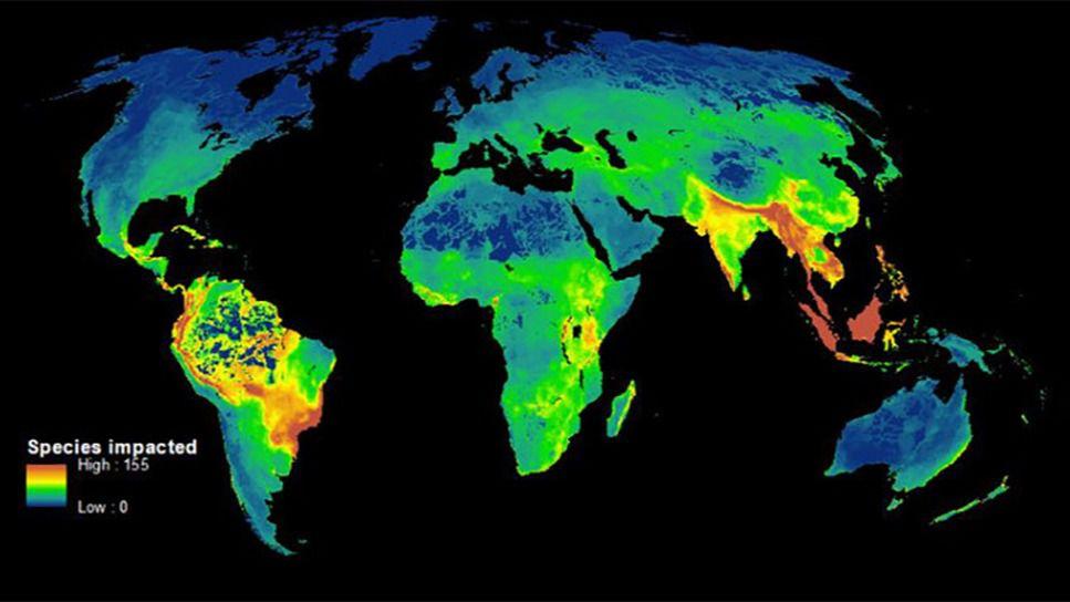 Este mapa muestra 'las zonas calientes' de la biodiversidad, donde la caza furtiva y la deforestación amenazan más a las especies