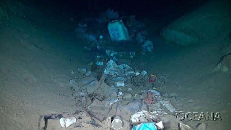 Oceana denuncia que el 99 por ciento del plástico que queda abandonado en el mar termina en el fondo y apenas el 1 por ciento se queda en superficie