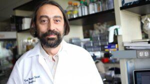 García-Sastre, en su laboratorio del Hospital Monte Sinaí