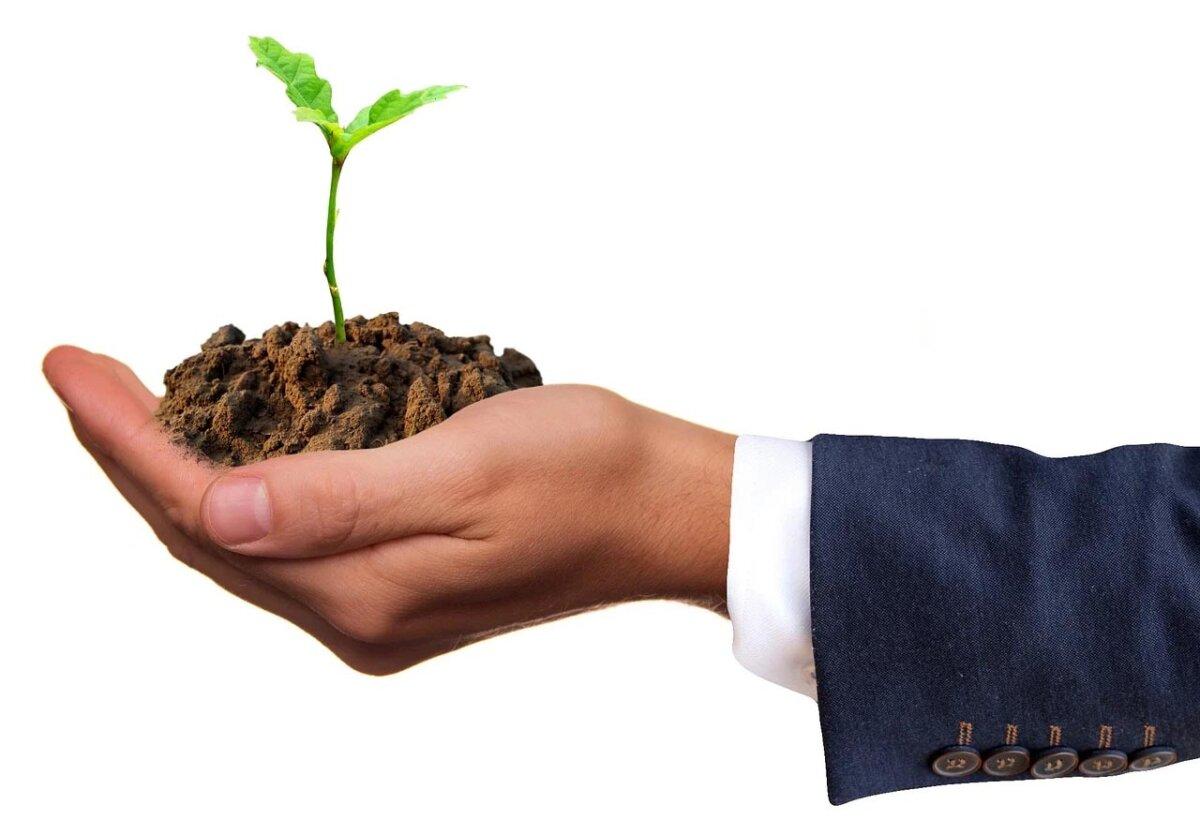 Inversión sostenible