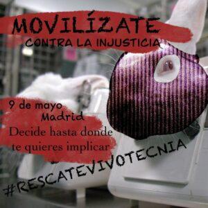 Convocan protesta y corte del tráfico el día 9 para que requisen a los animales del laboratorio Vivotecnia - ASAMBLEA #RESCATEVIVOTECNIA