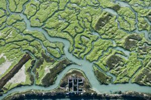 Vista aérea de las marismas de Doñana. / © Héctor Garrido (EDB-CSIC)