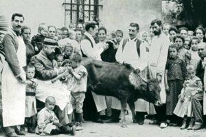 Inoculación de pus de vaca en el Hospital de Niños Pobres de Barcelona, hacia 1890. / CC Ayuntamiento de Barcelona