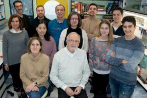El equipo de Isabel Sola, Luis Enjuanes y Sonia Zúñiga en el laboratorio de coronavirus del CNB-CSIC / CSIC